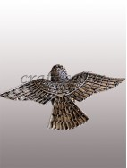 Filigree flying bird